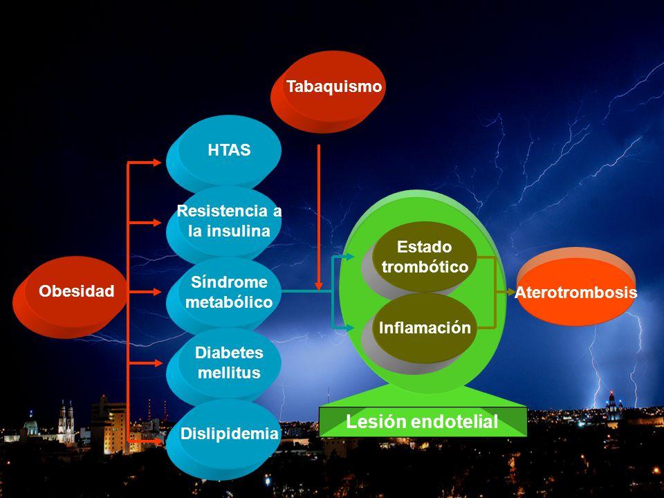 Lesión endotelial Tabaquismo HTAS Resistencia a la insulina Estado