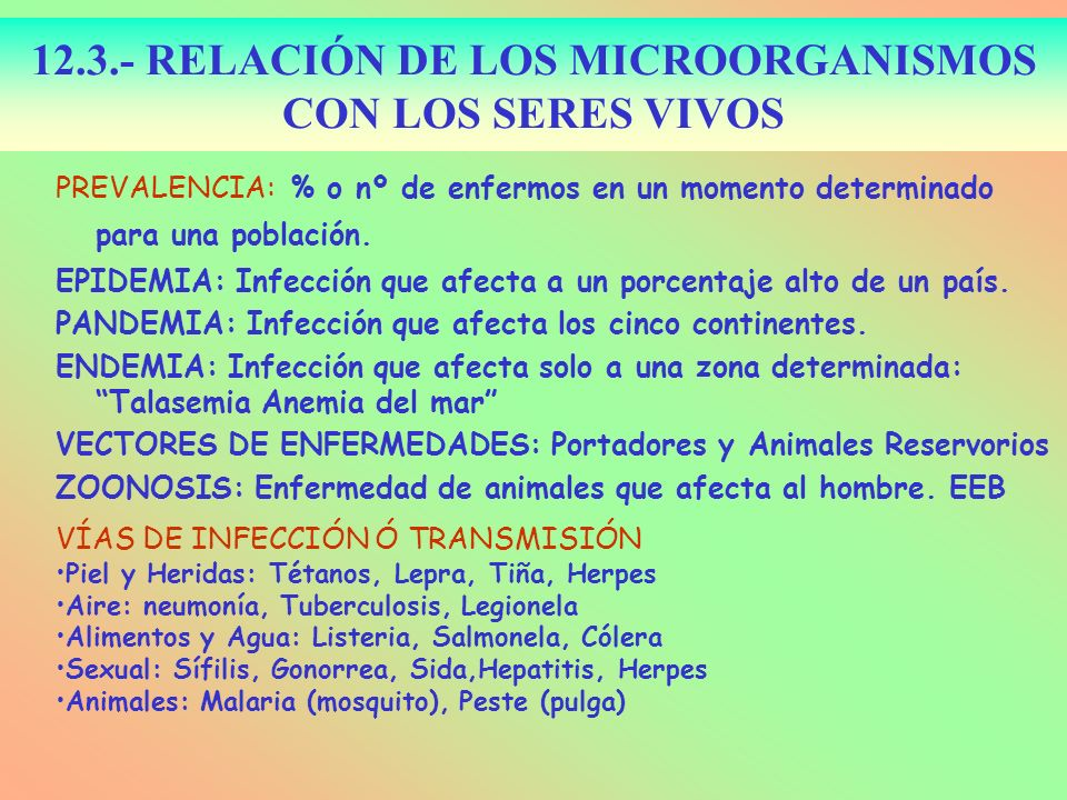 12.3.- RELACIÓN DE LOS MICROORGANISMOS CON LOS SERES VIVOS