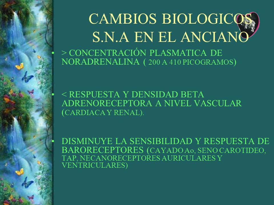 CAMBIOS BIOLOGICOS S.N.A EN EL ANCIANO