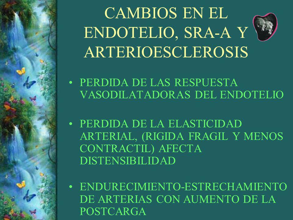 CAMBIOS EN EL ENDOTELIO, SRA-A Y ARTERIOESCLEROSIS