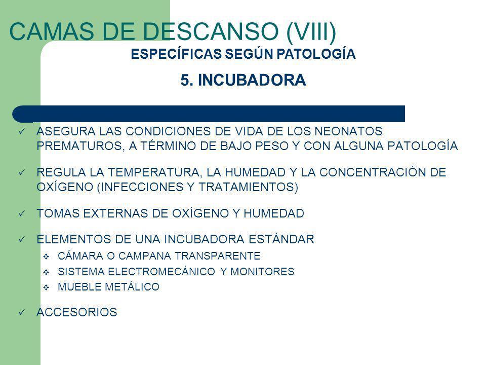 CAMAS DE DESCANSO (VIII)