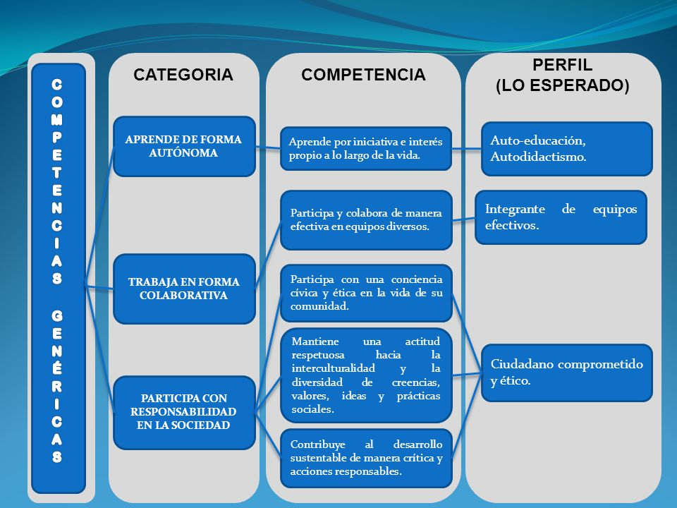 CATEGORIA COMPETENCIA PERFIL (LO ESPERADO)