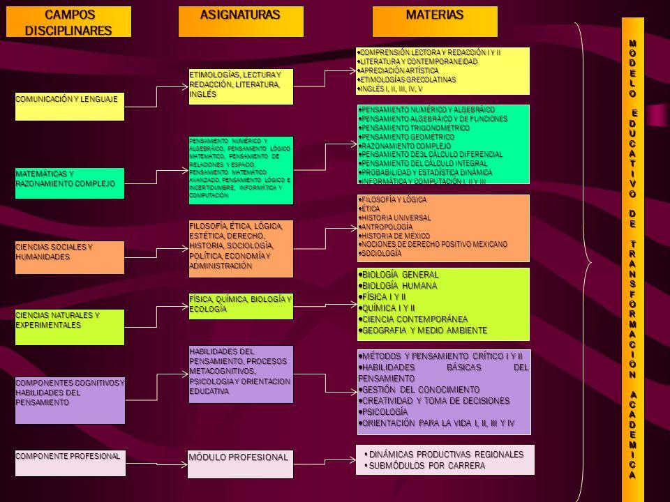 CAMPOS DISCIPLINARES ASIGNATURAS MATERIAS