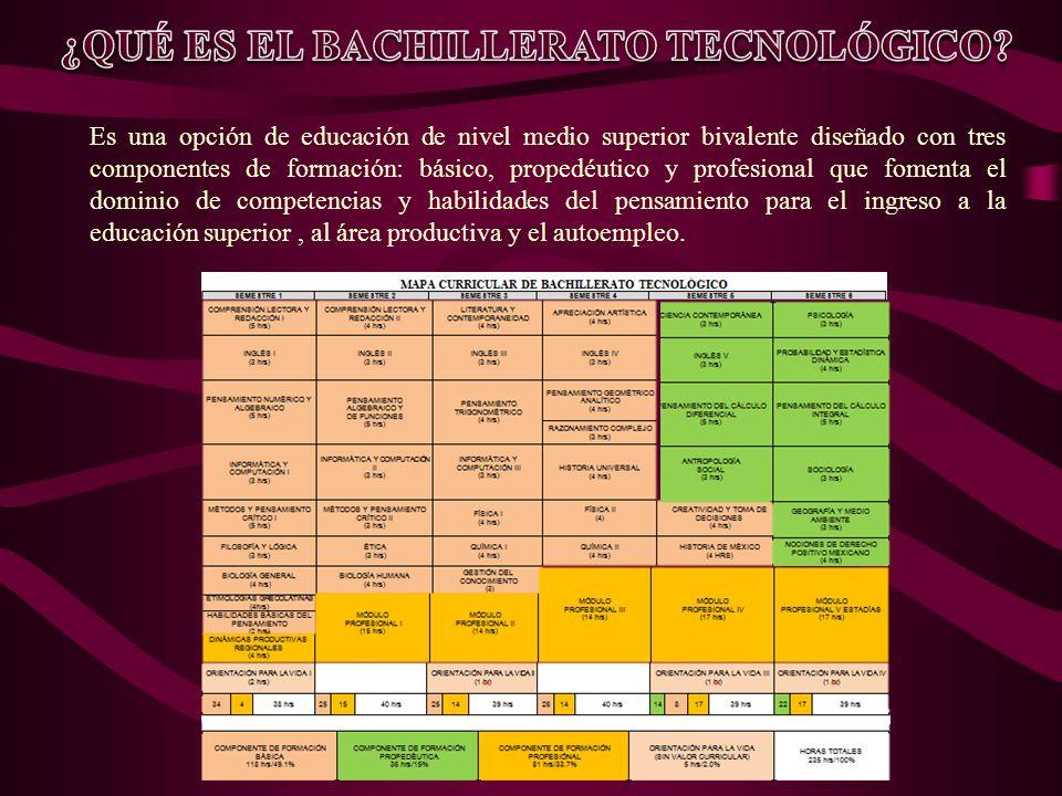 ¿QUÉ ES EL BACHILLERATO TECNOLÓGICO