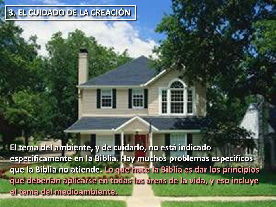 3. EL CUIDADO DE LA CREACIÓN