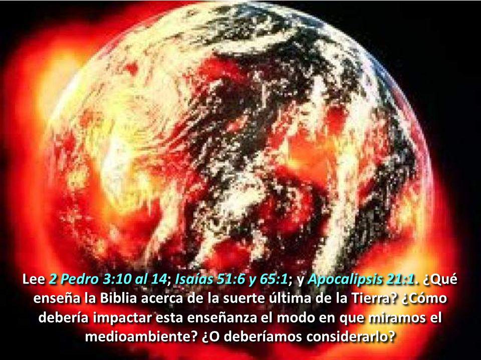 Lee 2 Pedro 3:10 al 14; Isaías 51:6 y 65:1; y Apocalipsis 21:1