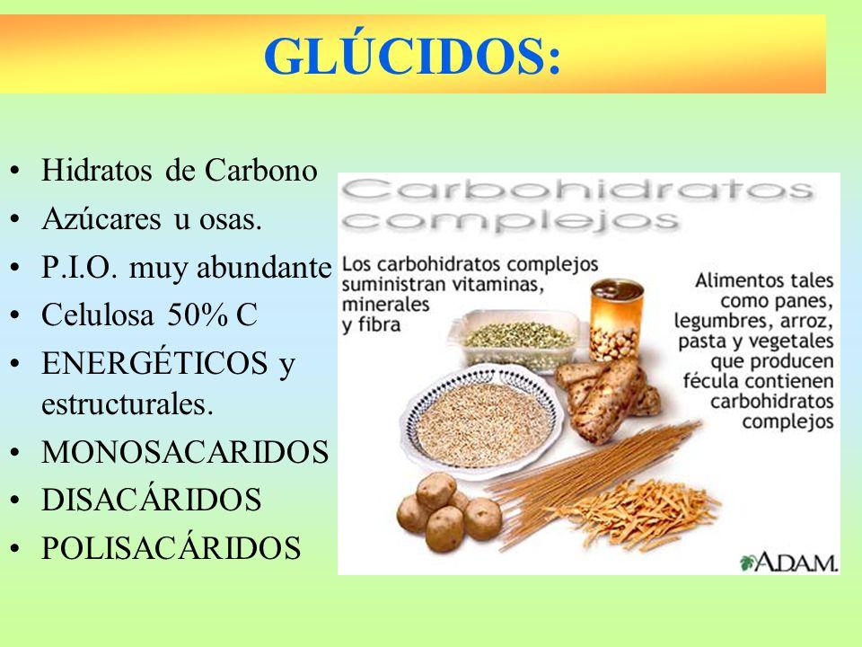 GLÚCIDOS: Hidratos de Carbono Azúcares u osas. P.I.O. muy abundante