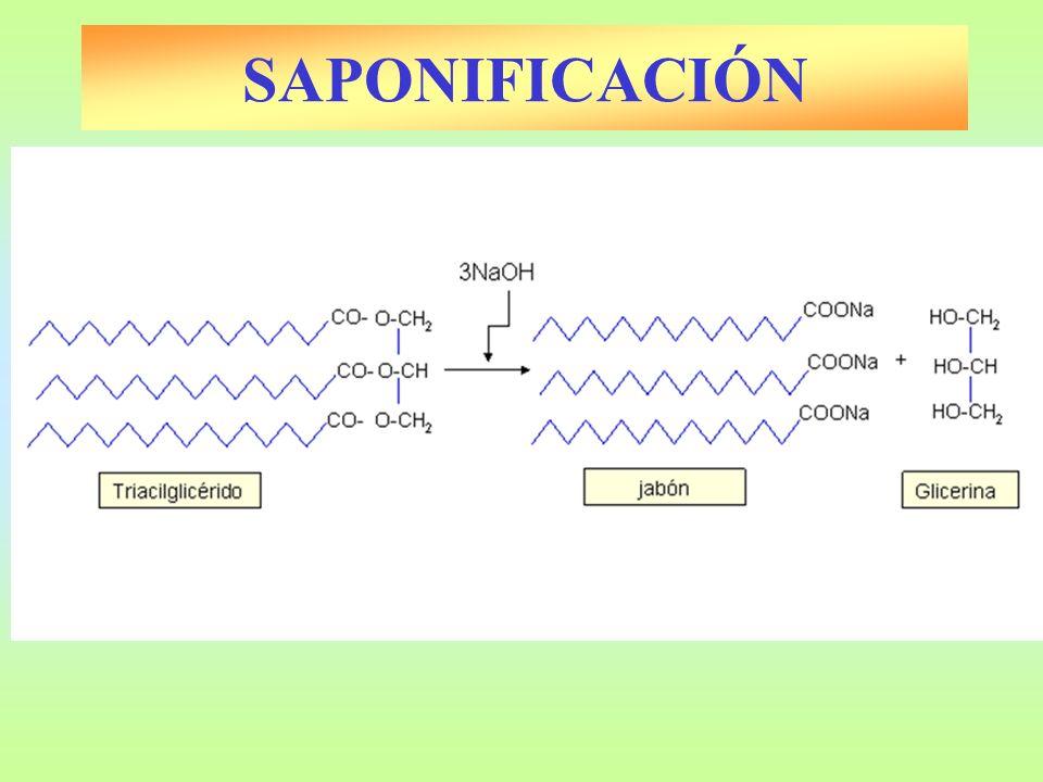 SAPONIFICACIÓN