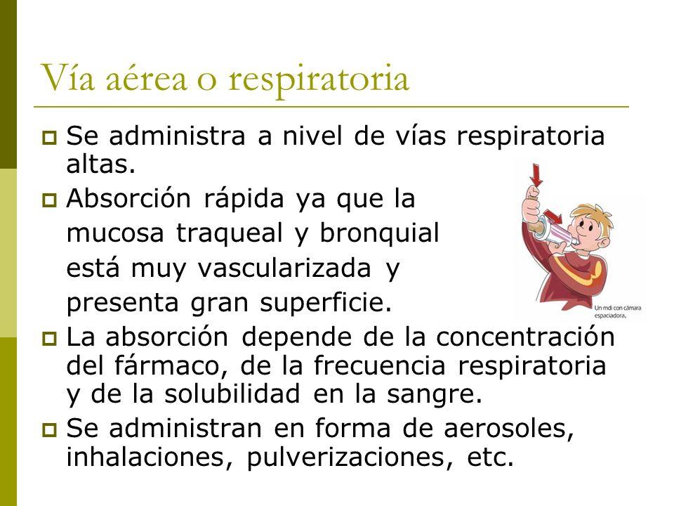 Vía aérea o respiratoria