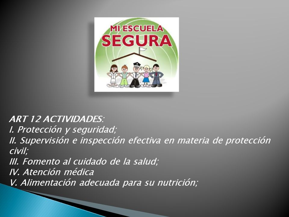 ART 12 ACTIVIDADES: I. Protección y seguridad; II. Supervisión e inspección efectiva en materia de protección civil;