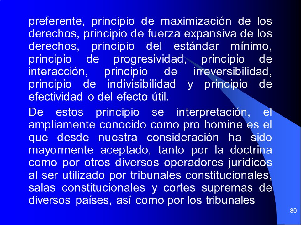 preferente, principio de maximización de los derechos, principio de fuerza expansiva de los derechos, principio del estándar mínimo, principio de progresividad, principio de interacción, principio de irreversibilidad, principio de indivisibilidad y principio de efectividad o del efecto útil.