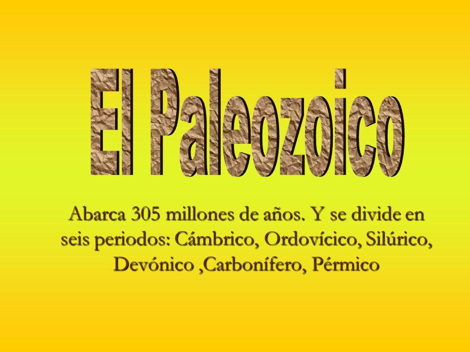 El Paleozoico Abarca 305 millones de años.