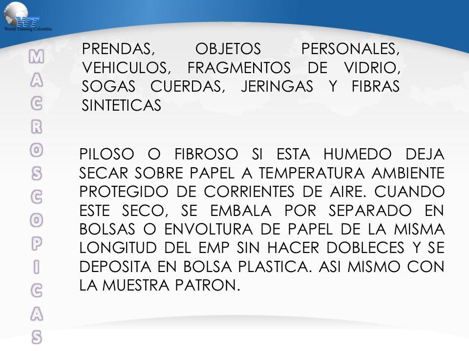 PRENDAS, OBJETOS PERSONALES, VEHICULOS, FRAGMENTOS DE VIDRIO, SOGAS CUERDAS, JERINGAS Y FIBRAS SINTETICAS