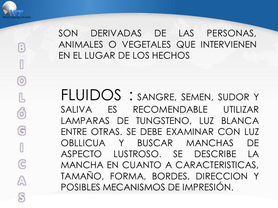 SON DERIVADAS DE LAS PERSONAS, ANIMALES O VEGETALES QUE INTERVIENEN EN EL LUGAR DE LOS HECHOS