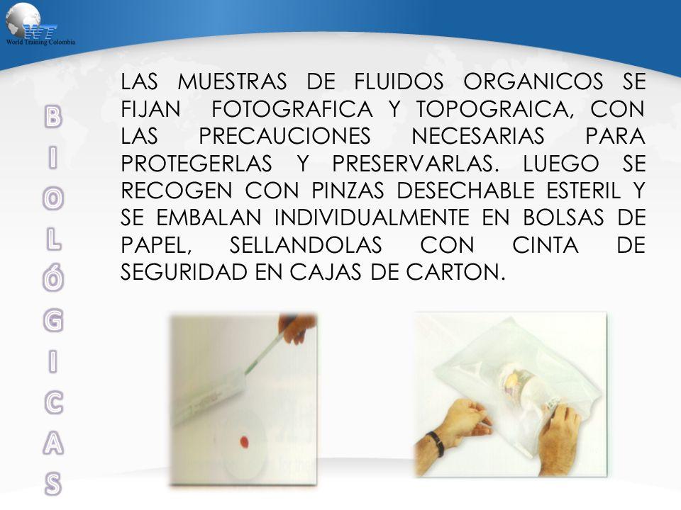 LAS MUESTRAS DE FLUIDOS ORGANICOS SE FIJAN FOTOGRAFICA Y TOPOGRAICA, CON LAS PRECAUCIONES NECESARIAS PARA PROTEGERLAS Y PRESERVARLAS. LUEGO SE RECOGEN CON PINZAS DESECHABLE ESTERIL Y SE EMBALAN INDIVIDUALMENTE EN BOLSAS DE PAPEL, SELLANDOLAS CON CINTA DE SEGURIDAD EN CAJAS DE CARTON.