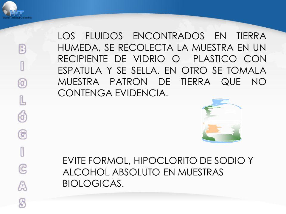 LOS FLUIDOS ENCONTRADOS EN TIERRA HUMEDA, SE RECOLECTA LA MUESTRA EN UN RECIPIENTE DE VIDRIO O PLASTICO CON ESPATULA Y SE SELLA. EN OTRO SE TOMALA MUESTRA PATRON DE TIERRA QUE NO CONTENGA EVIDENCIA.