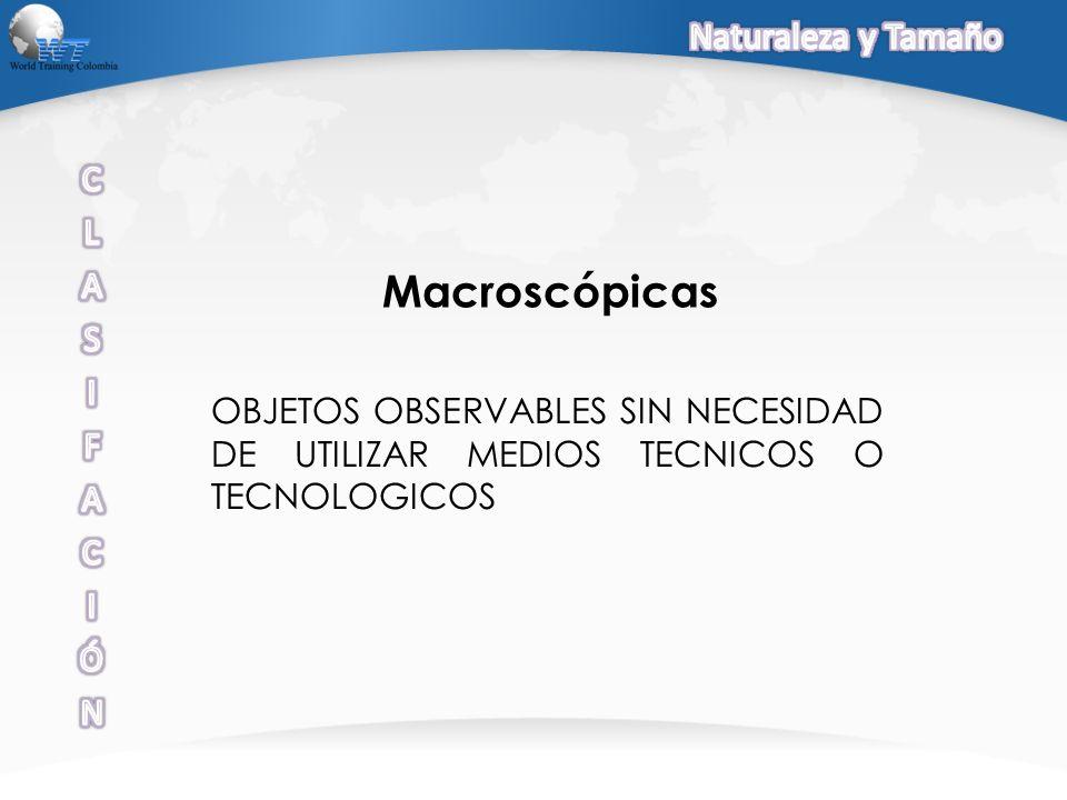 Macroscópicas Naturaleza y Tamaño C L A S I F Ó N