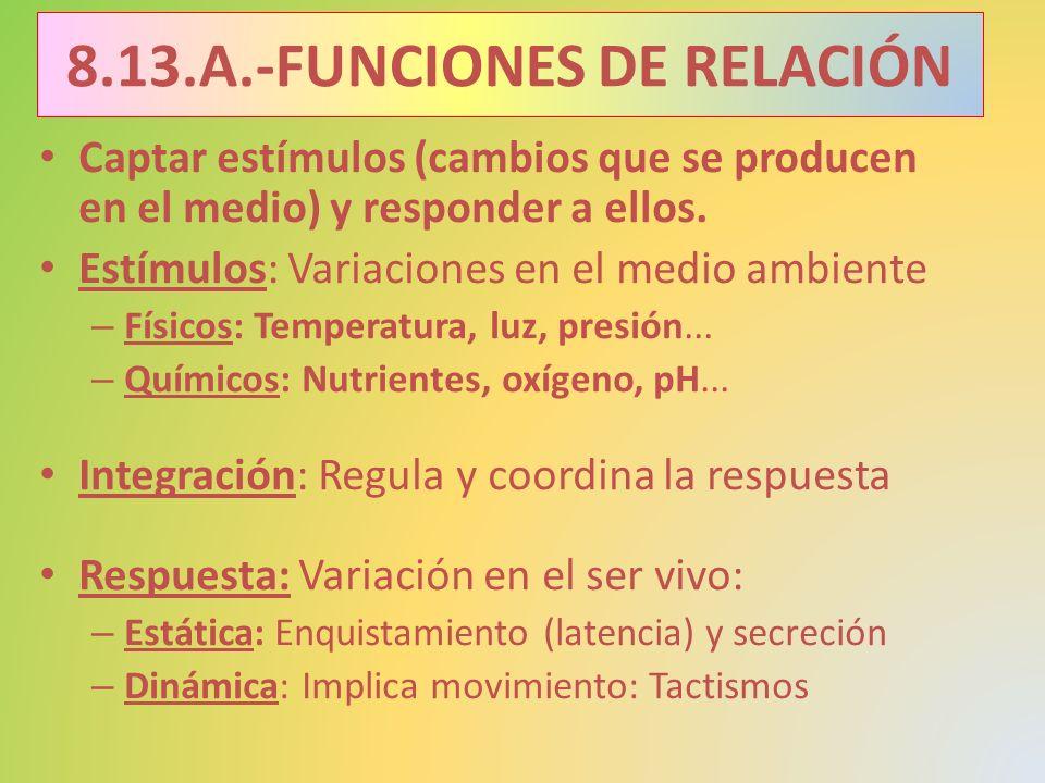 8.13.A.-FUNCIONES DE RELACIÓN