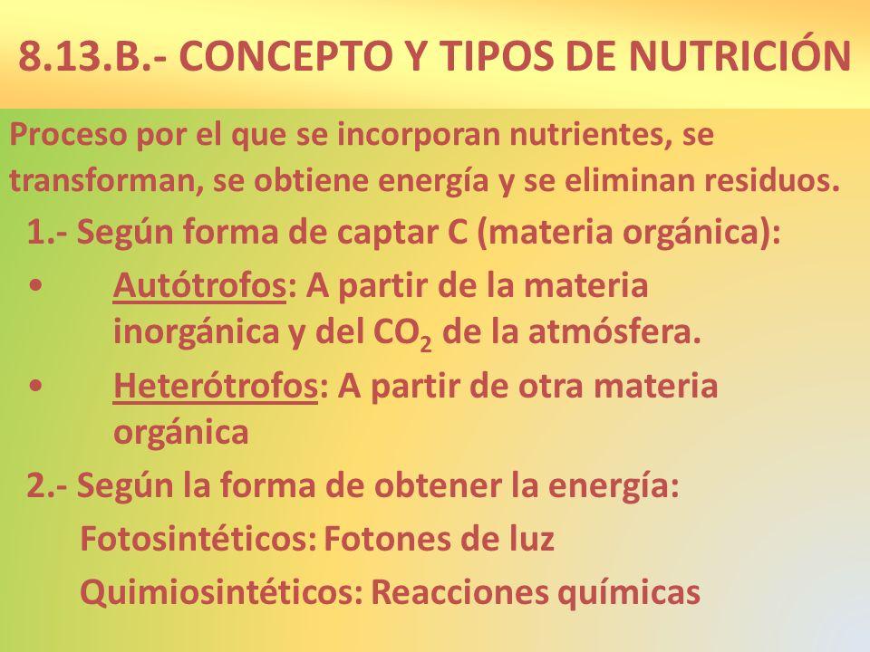 8.13.B.- CONCEPTO Y TIPOS DE NUTRICIÓN