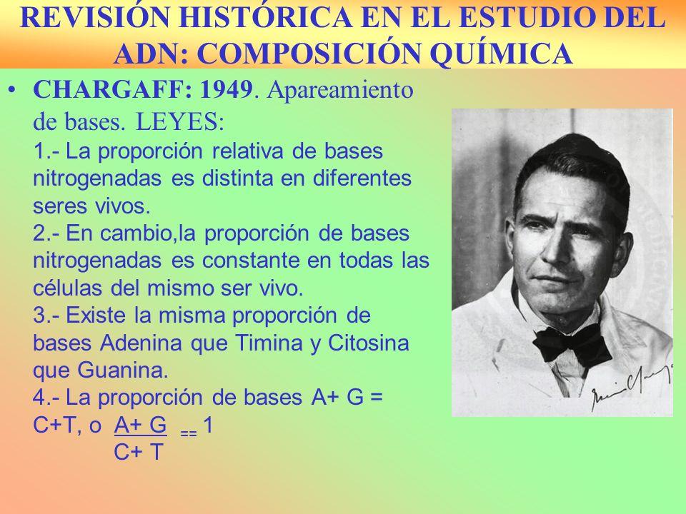 REVISIÓN HISTÓRICA EN EL ESTUDIO DEL ADN: COMPOSICIÓN QUÍMICA
