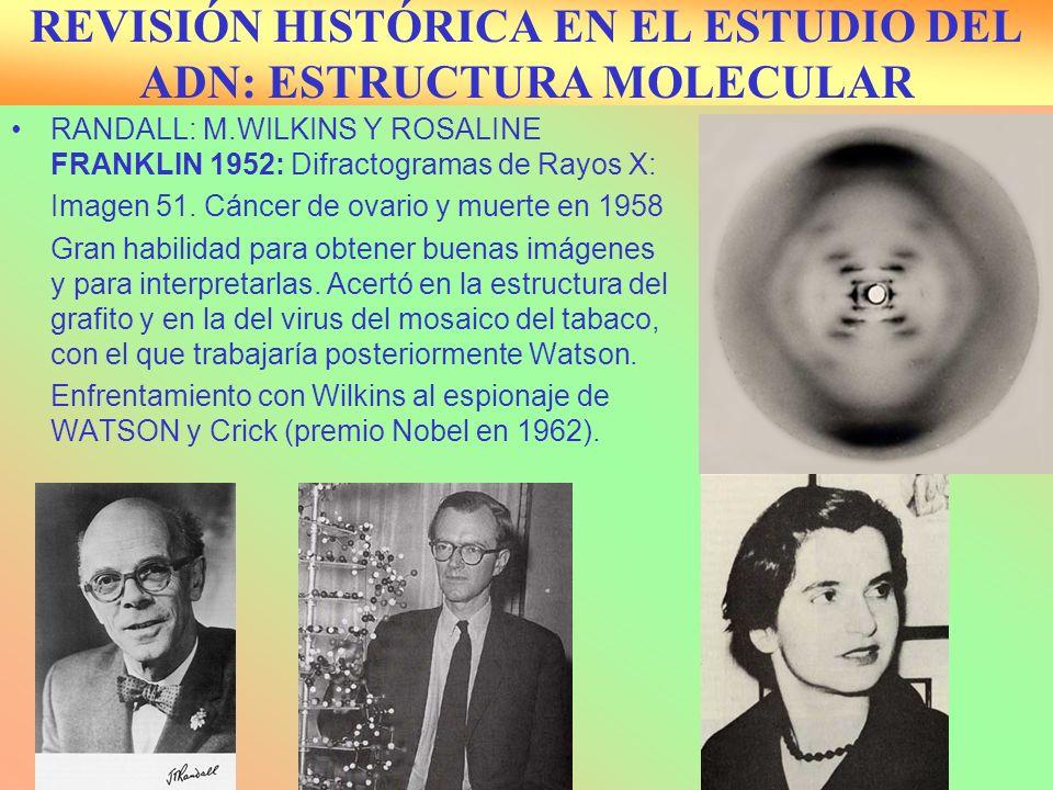 REVISIÓN HISTÓRICA EN EL ESTUDIO DEL ADN: ESTRUCTURA MOLECULAR