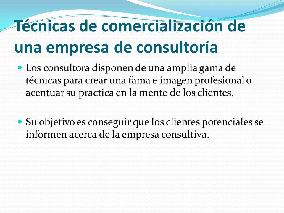 Técnicas de comercialización de una empresa de consultoría