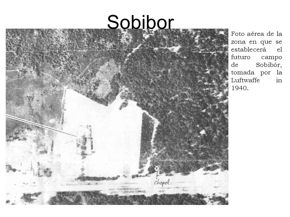 SobiborFoto aérea de la zona en que se establecerá el futuro campo de Sobibór, tomada por la Luftwaffe in 1940.