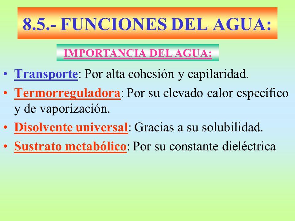 8.5.- FUNCIONES DEL AGUA: Transporte: Por alta cohesión y capilaridad.