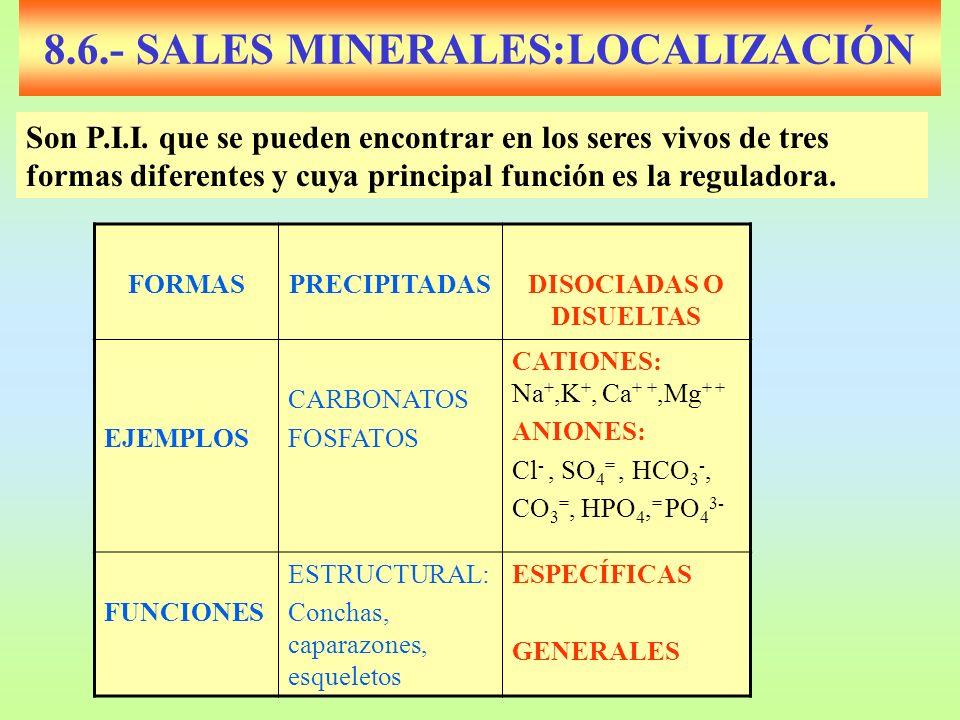 8.6.- SALES MINERALES:LOCALIZACIÓN