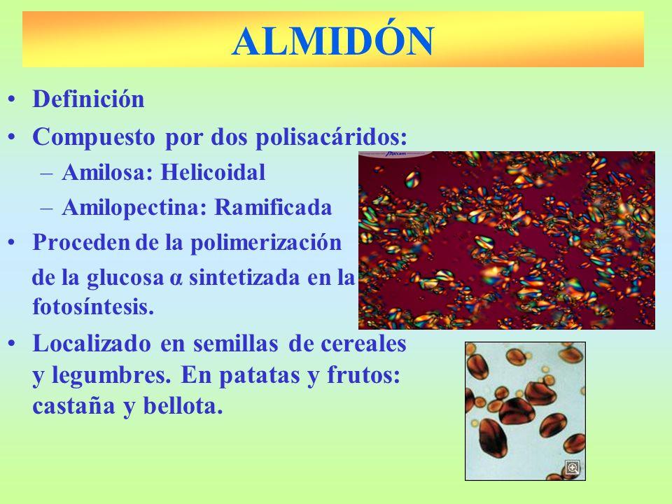 ALMIDÓN Definición Compuesto por dos polisacáridos: