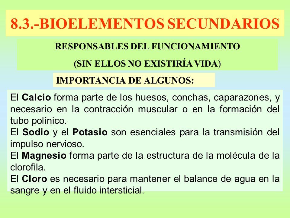 8.3.-BIOELEMENTOS SECUNDARIOS
