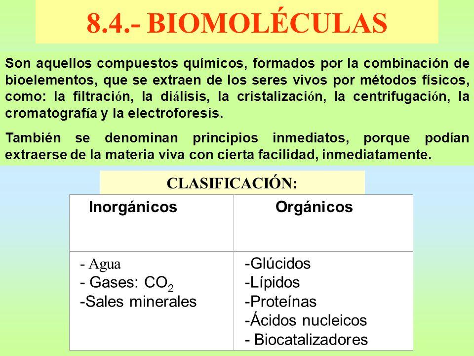 8.4.- BIOMOLÉCULAS CLASIFICACIÓN: - Agua - Gases: CO2 -Sales minerales