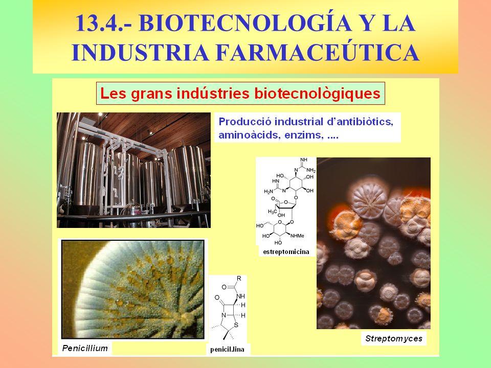 13.4.- BIOTECNOLOGÍA Y LA INDUSTRIA FARMACEÚTICA