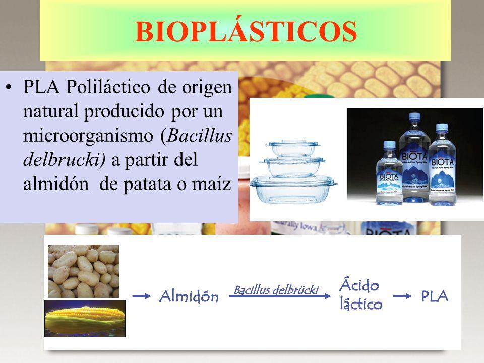 BIOPLÁSTICOS PLA Poliláctico de origen natural producido por un microorganismo (Bacillus delbrucki) a partir del almidón de patata o maíz.