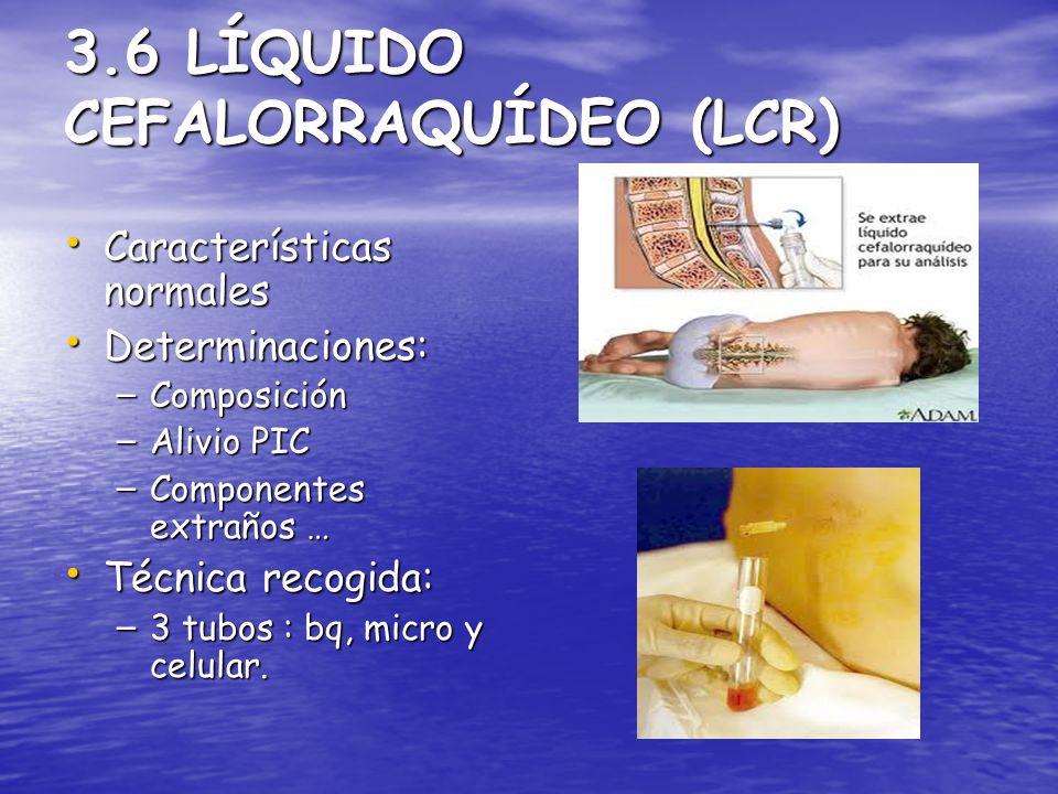 3.6 LÍQUIDO CEFALORRAQUÍDEO (LCR)
