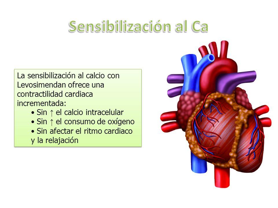 Sensibilización al Ca La sensibilización al calcio con Levosimendan ofrece una contractilidad cardiaca incrementada: