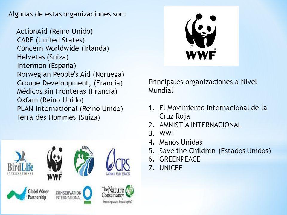 Algunas de estas organizaciones son: