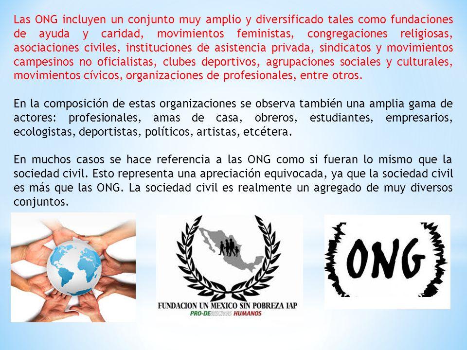 Las ONG incluyen un conjunto muy amplio y diversificado tales como fundaciones de ayuda y caridad, movimientos feministas, congregaciones religiosas, asociaciones civiles, instituciones de asistencia privada, sindicatos y movimientos campesinos no oficialistas, clubes deportivos, agrupaciones sociales y culturales, movimientos cívicos, organizaciones de profesionales, entre otros.