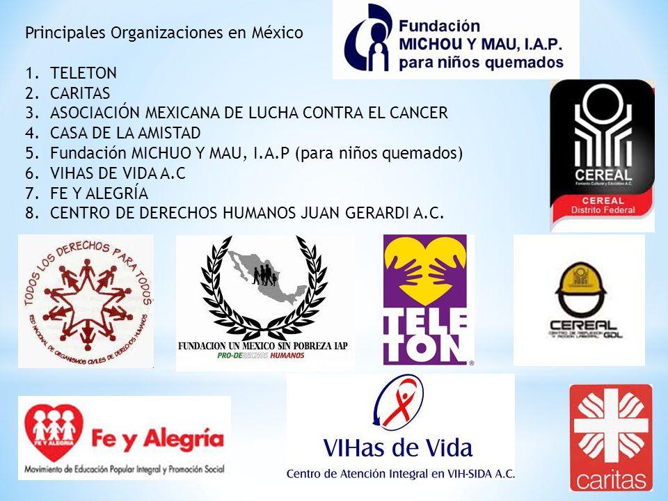 Principales Organizaciones en México