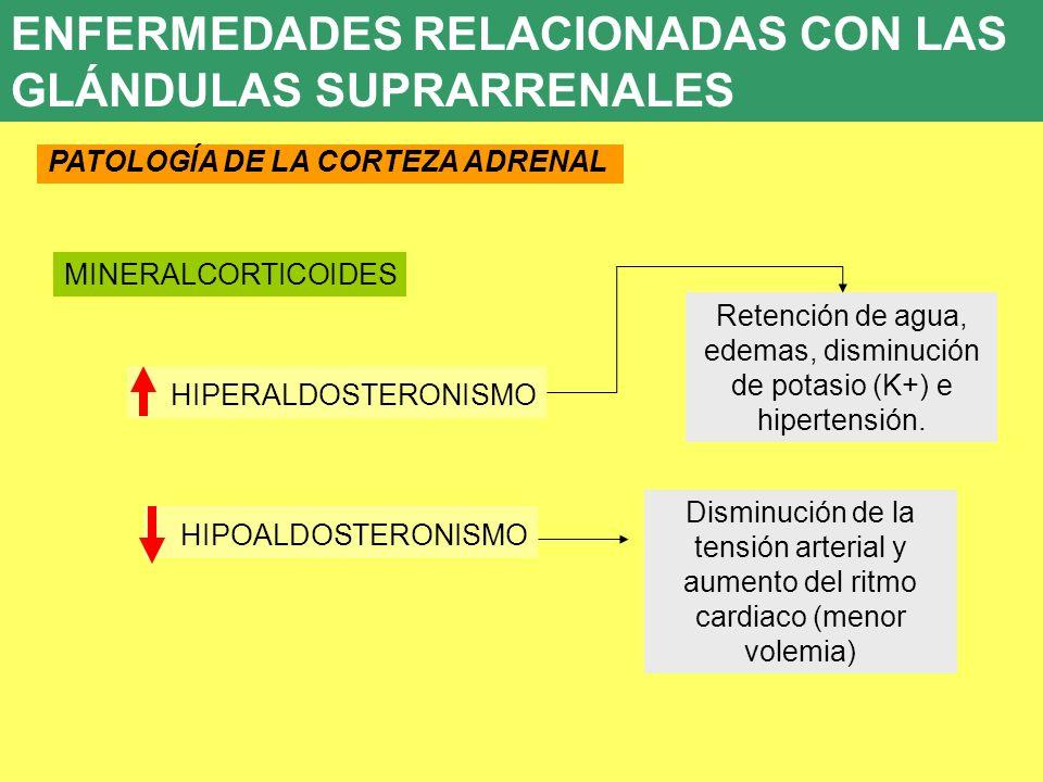 Retención de agua, edemas, disminución de potasio (K+) e hipertensión.