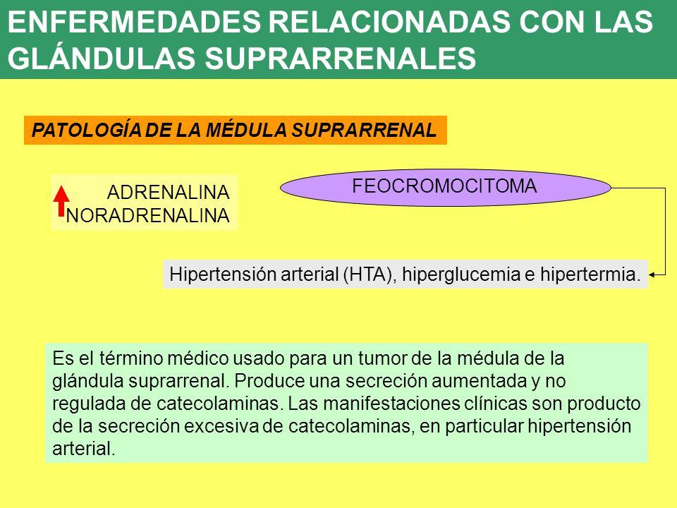 ENFERMEDADES RELACIONADAS CON LAS GLÁNDULAS SUPRARRENALES
