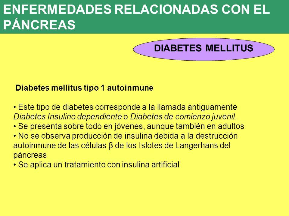 ENFERMEDADES RELACIONADAS CON EL PÁNCREAS 8. ENFERMEDADES ENDOCRINAS