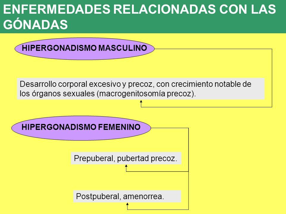 HIPERGONADISMO MASCULINO HIPERGONADISMO FEMENINO