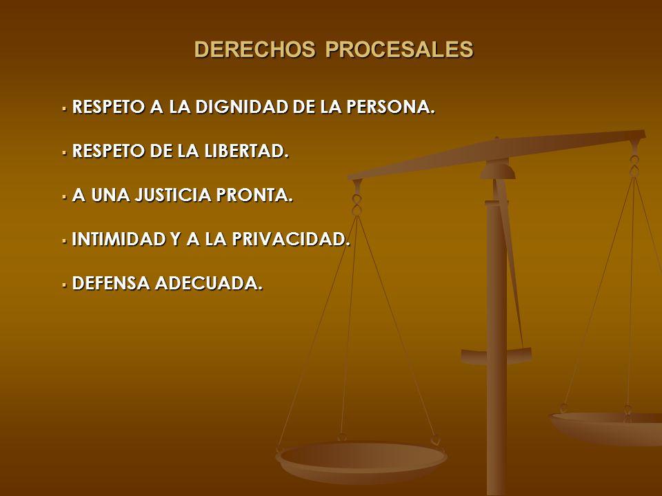 DERECHOS PROCESALES RESPETO A LA DIGNIDAD DE LA PERSONA.