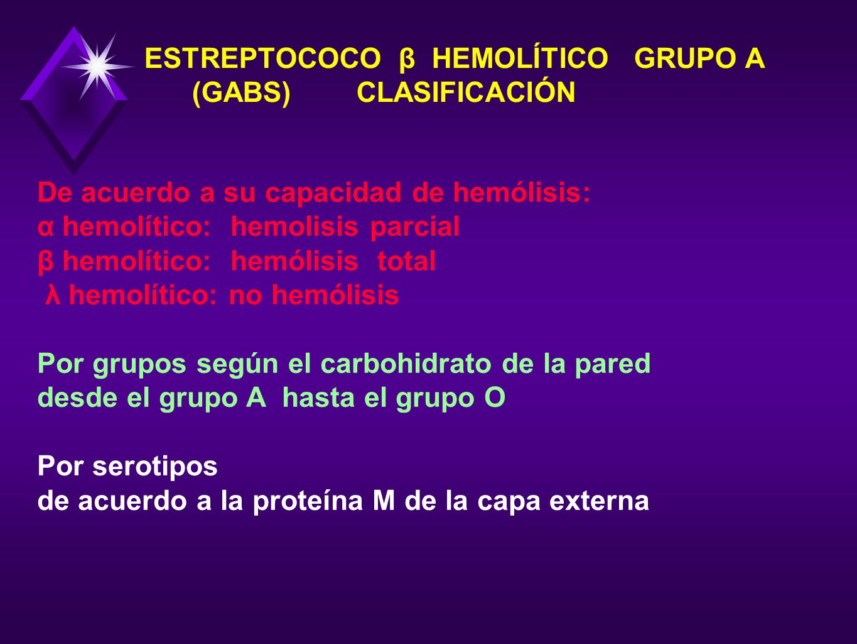 ESTREPTOCOCO β HEMOLÍTICO GRUPO A