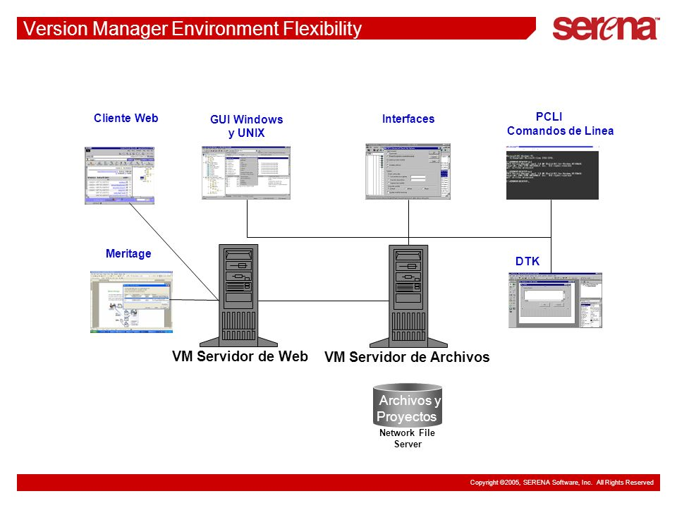 Version Manager Environment Flexibility
