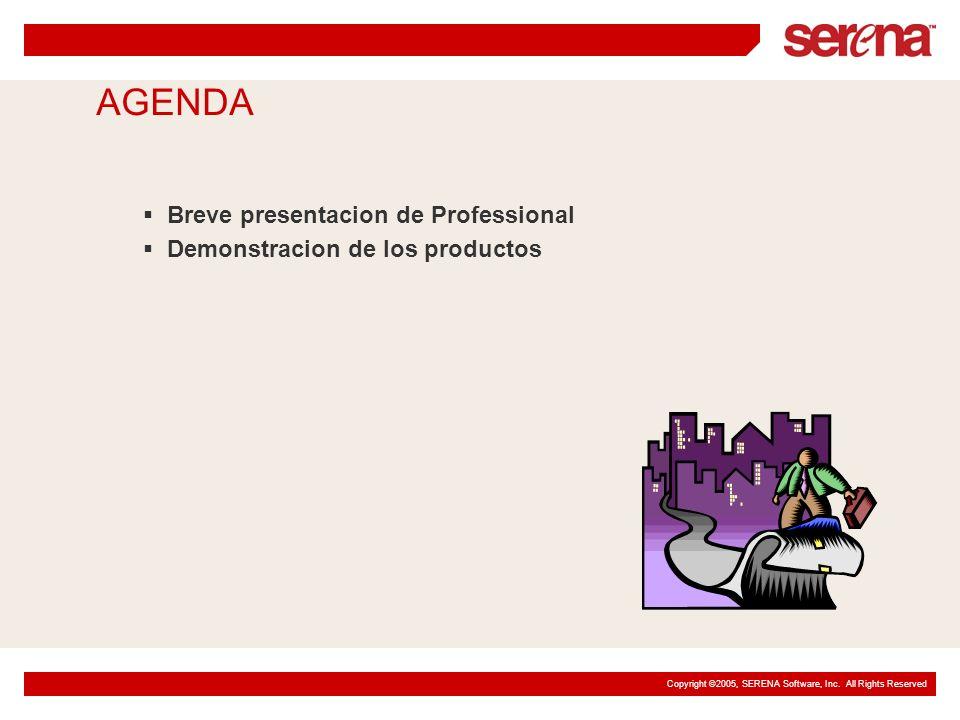 AGENDA Breve presentacion de Professional