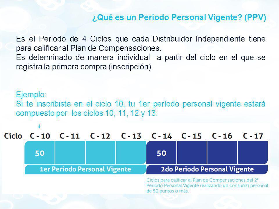 ¿Qué es un Periodo Personal Vigente (PPV)