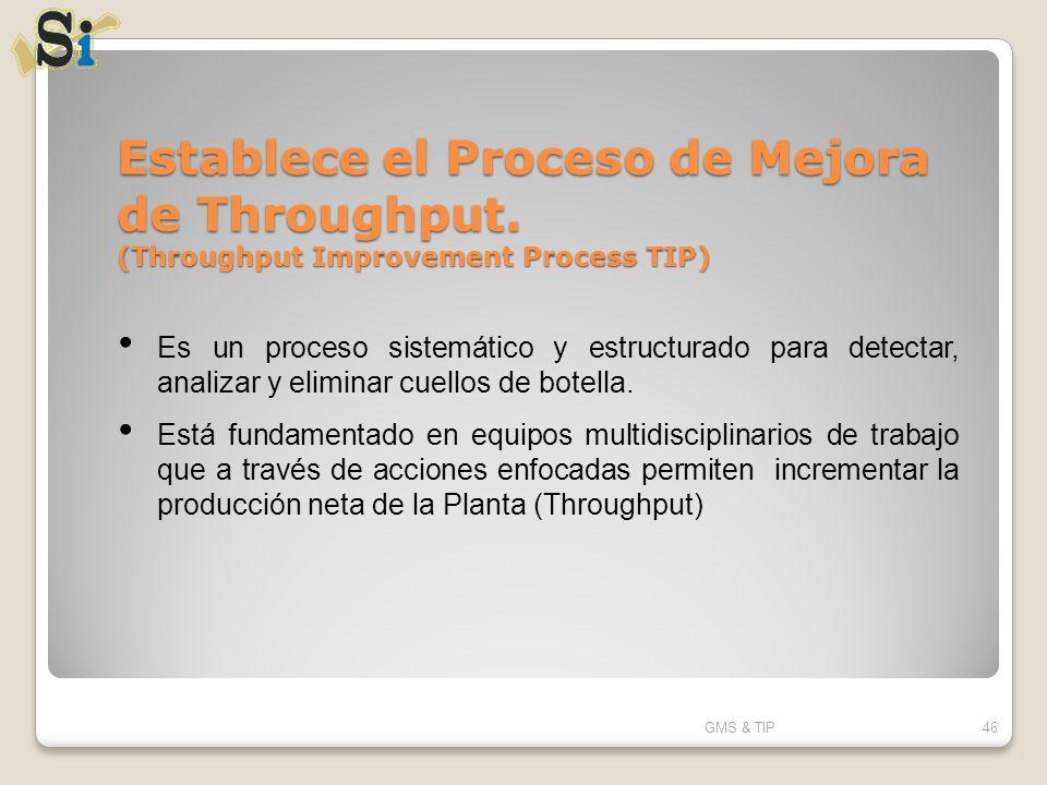 Establece el Proceso de Mejora de Throughput
