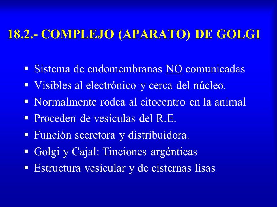 18.2.- COMPLEJO (APARATO) DE GOLGI